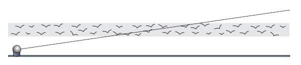 Drawing of radar beam passing through a flock of birds